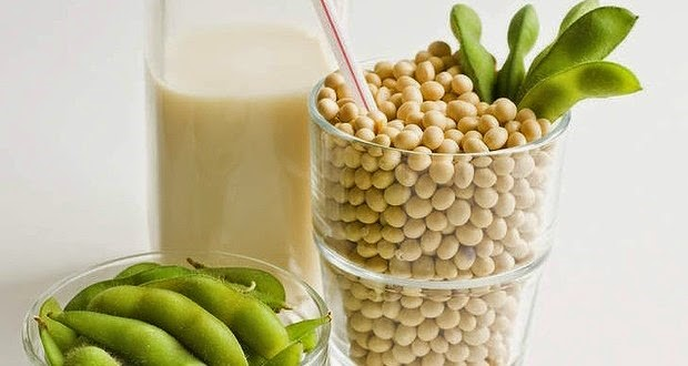 Soy: The Good, the Questions, and the Wonderful